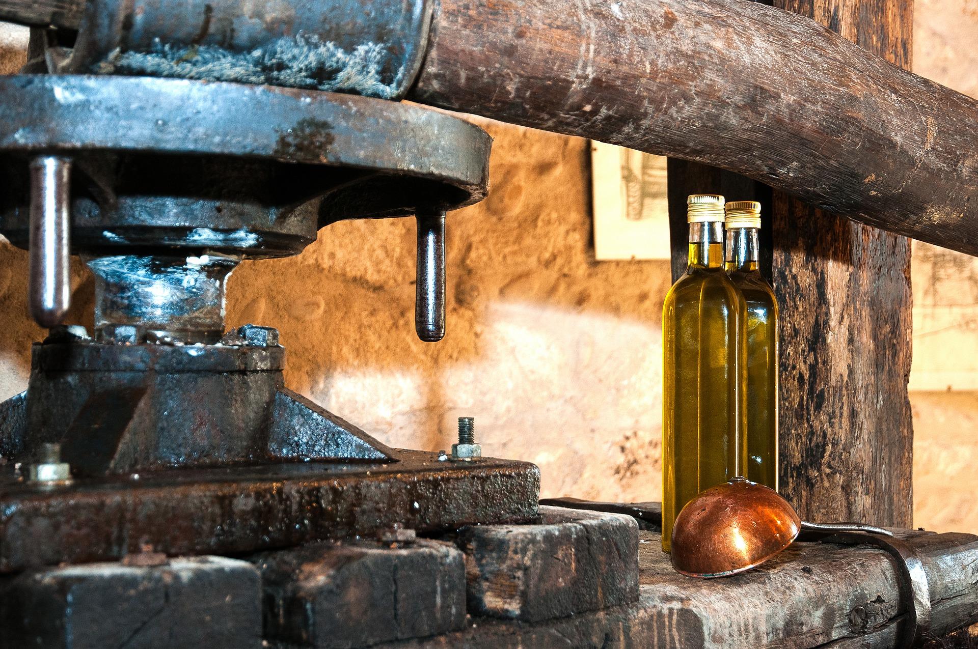 Olivenöl vom Gardasee
